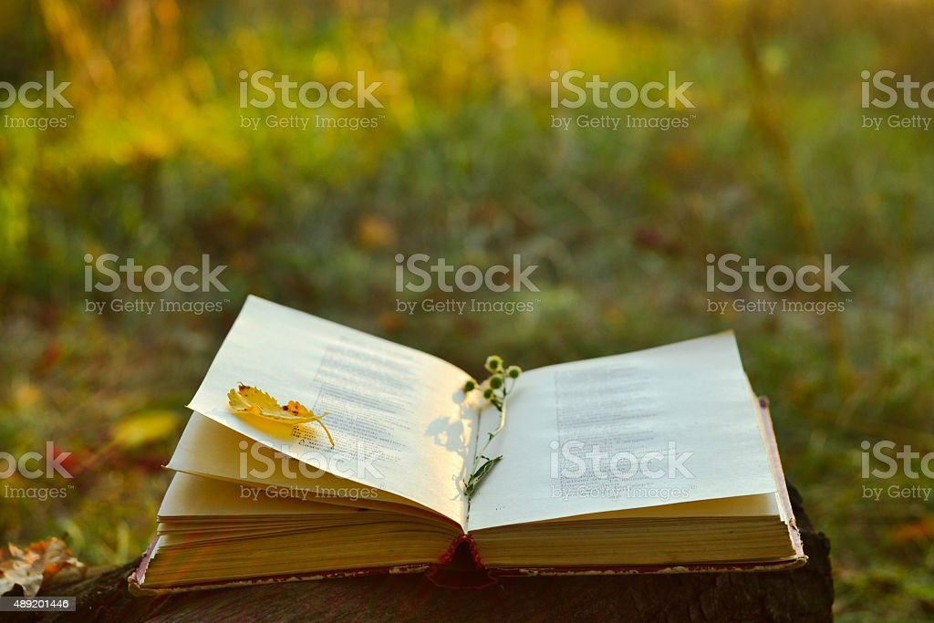 Vintage book of poetry outdoors stock photo