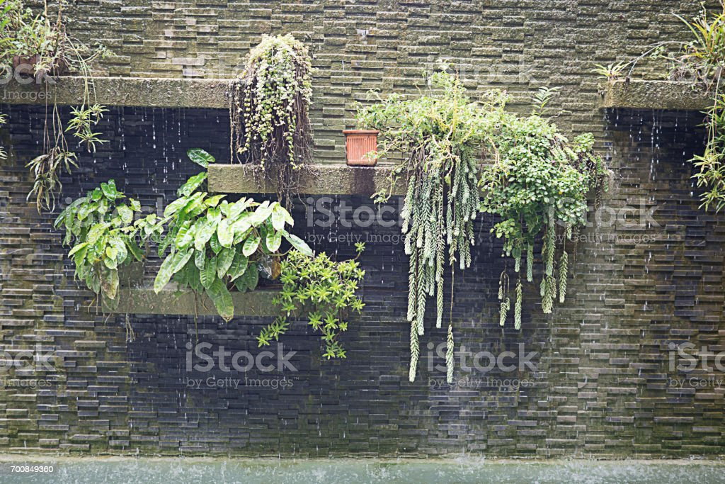 Vintage brick wall with layer of green plant and waterfall stock photo