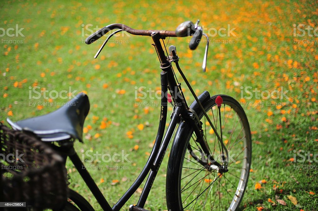 Vintage, klasyczny stary rower na zewnątrz park zbiór zdjęć royalty-free
