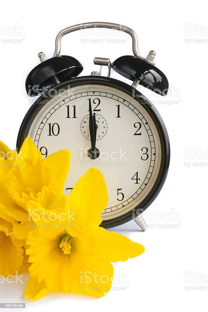Vintage clock, yellow daffodils, dst. stock photo