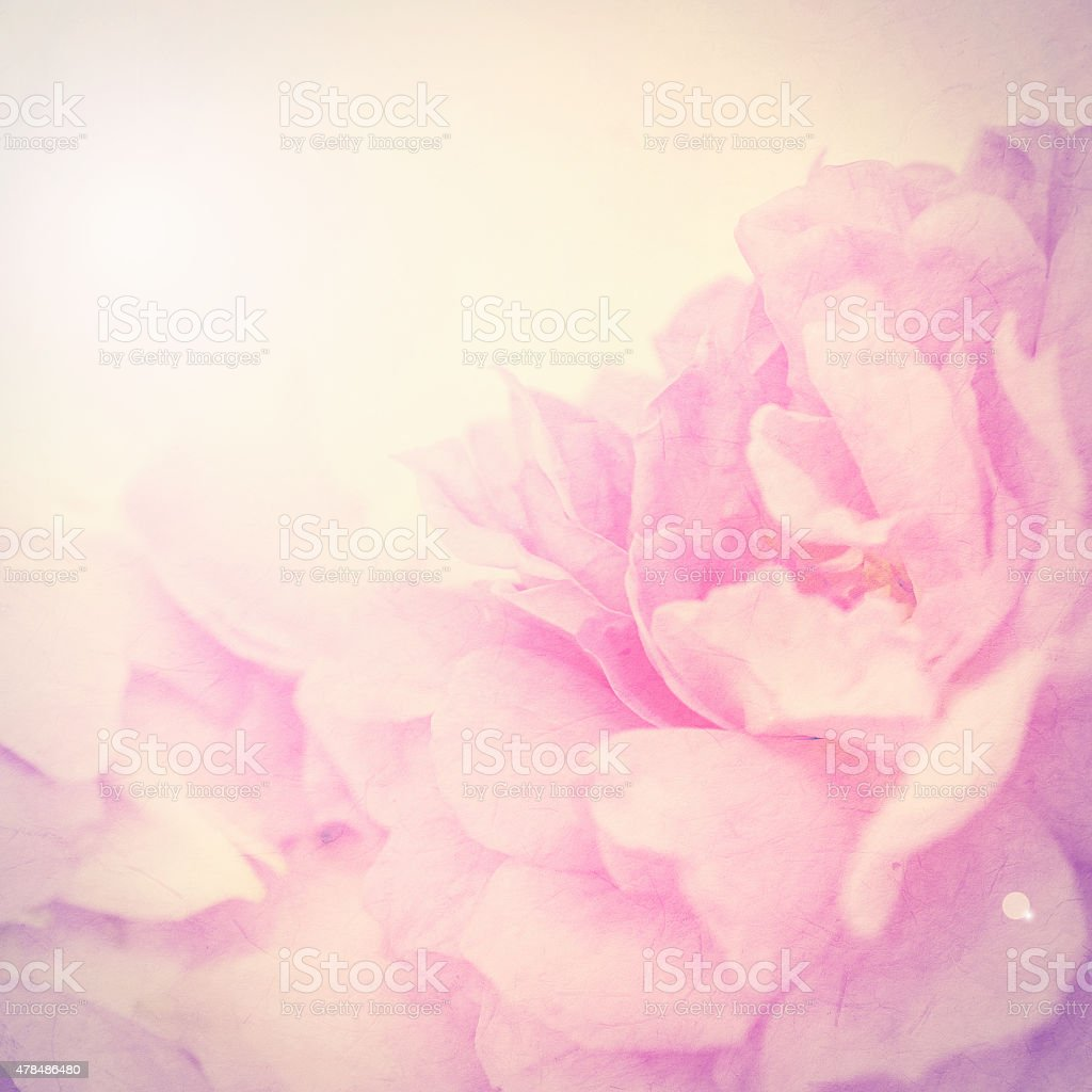 vintage color flowers in soft  style on mulberry paper texture stock photo