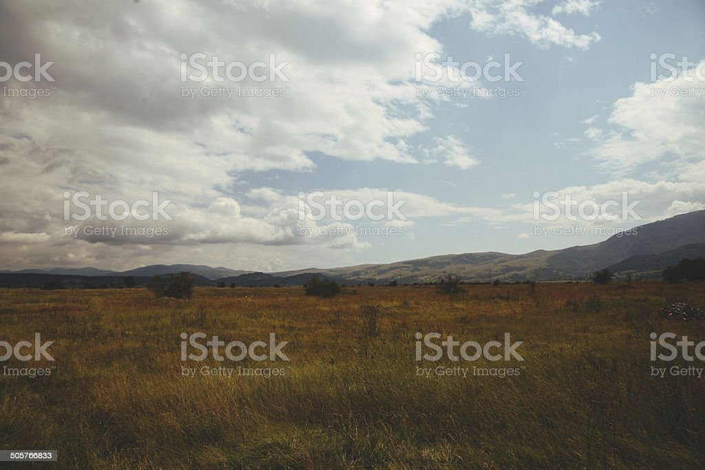 vintage colored nature royalty-free stock photo