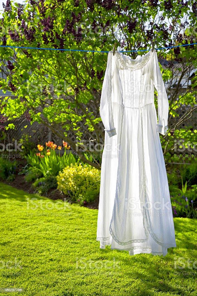 Vintage Dress royalty-free stock photo