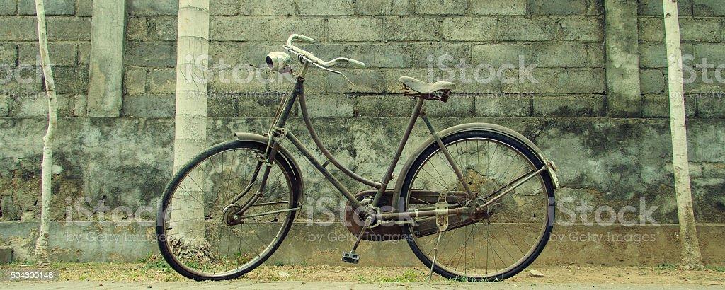 Vintage Fahrrad vor einer Mauer mit Palmen stock photo