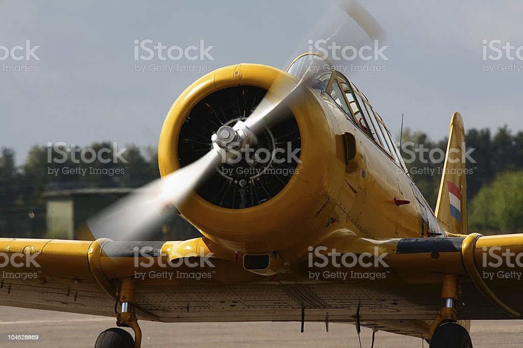 Vintage Fighter Bomber royalty-free stock photo