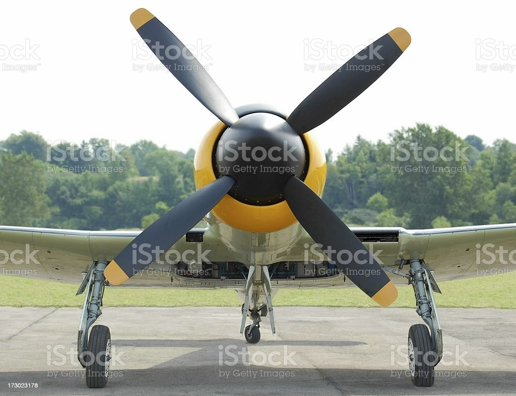 Vintage fighter plane Hawker Sea Fury royalty-free stock photo