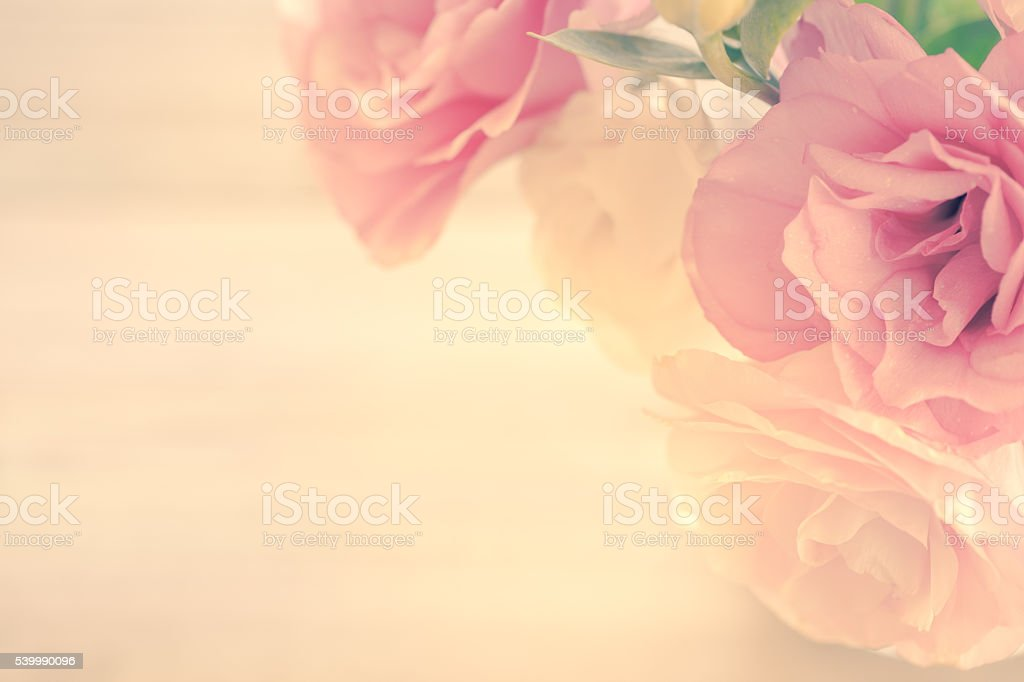 Vintage Floral Background with gentle pink flowers stock photo