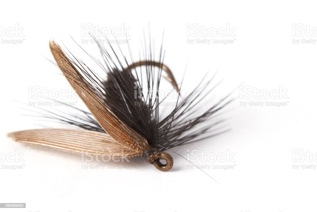 Vintage Fly Fishing Lure royalty-free stock photo