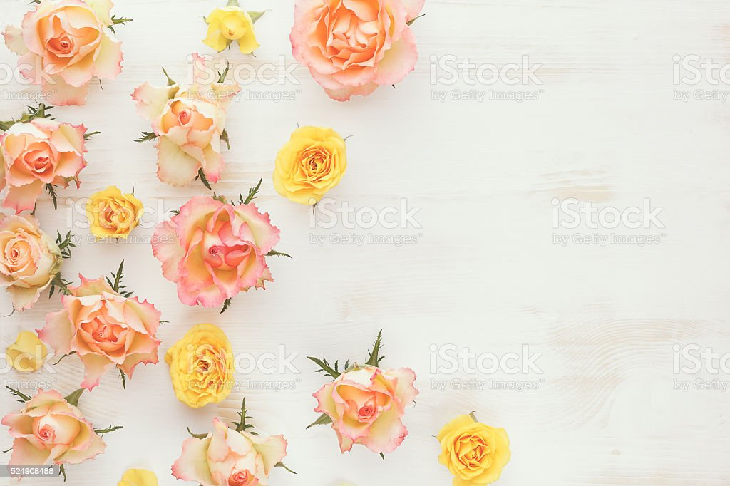 Vintage fresh rose floral background stock photo