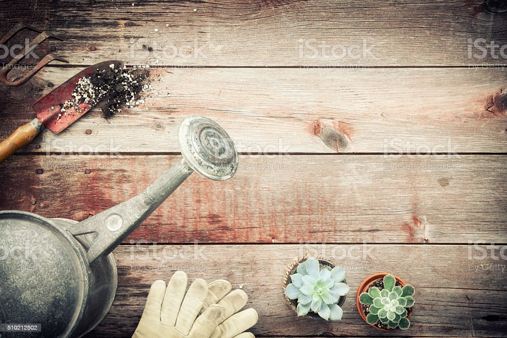 Vintage Gardening Watering Can, Hand Shovel, Rakes, Old Wood Background stock photo