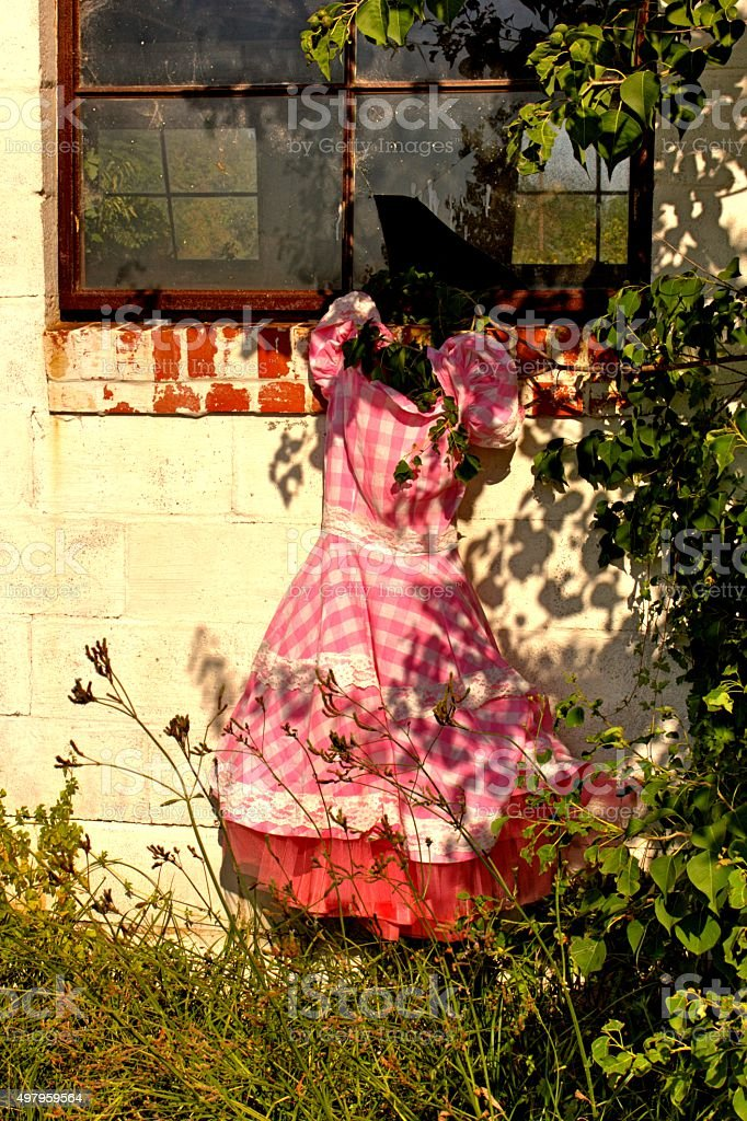 Vintage Gingham Dress In Front of Broken Window stock photo