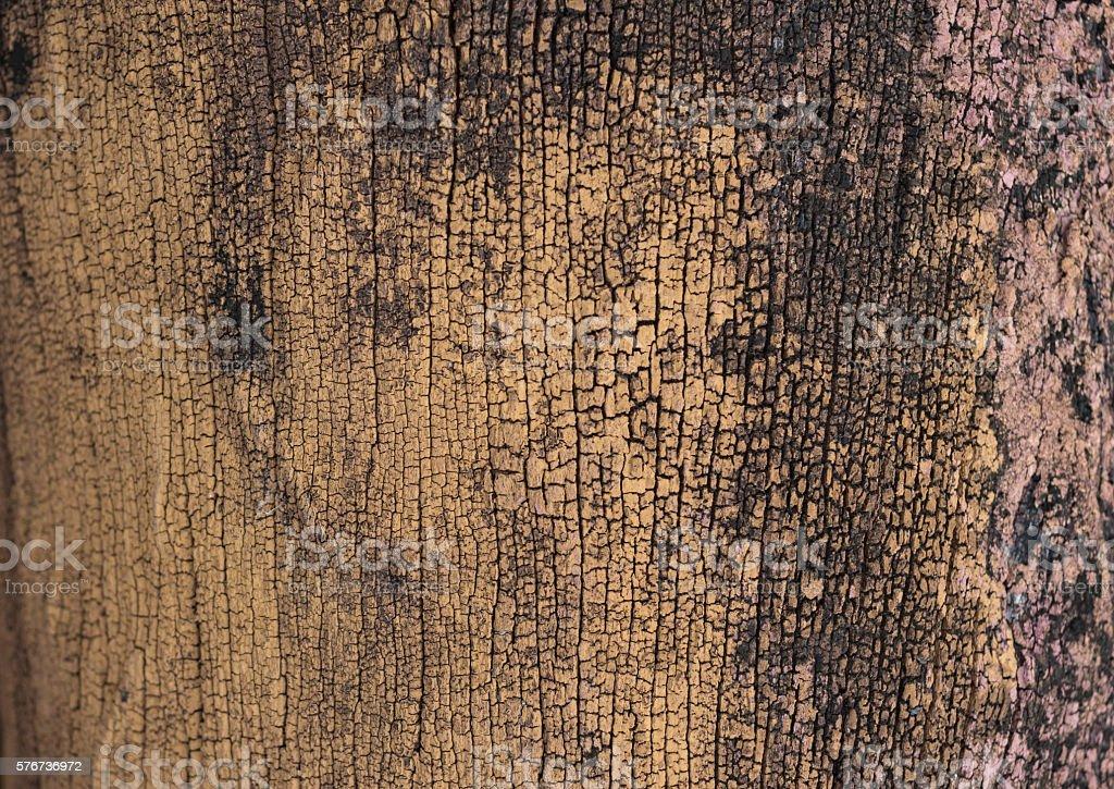 vintage grunge timber wood plank brown texture background Стоковые фото Стоковая фотография