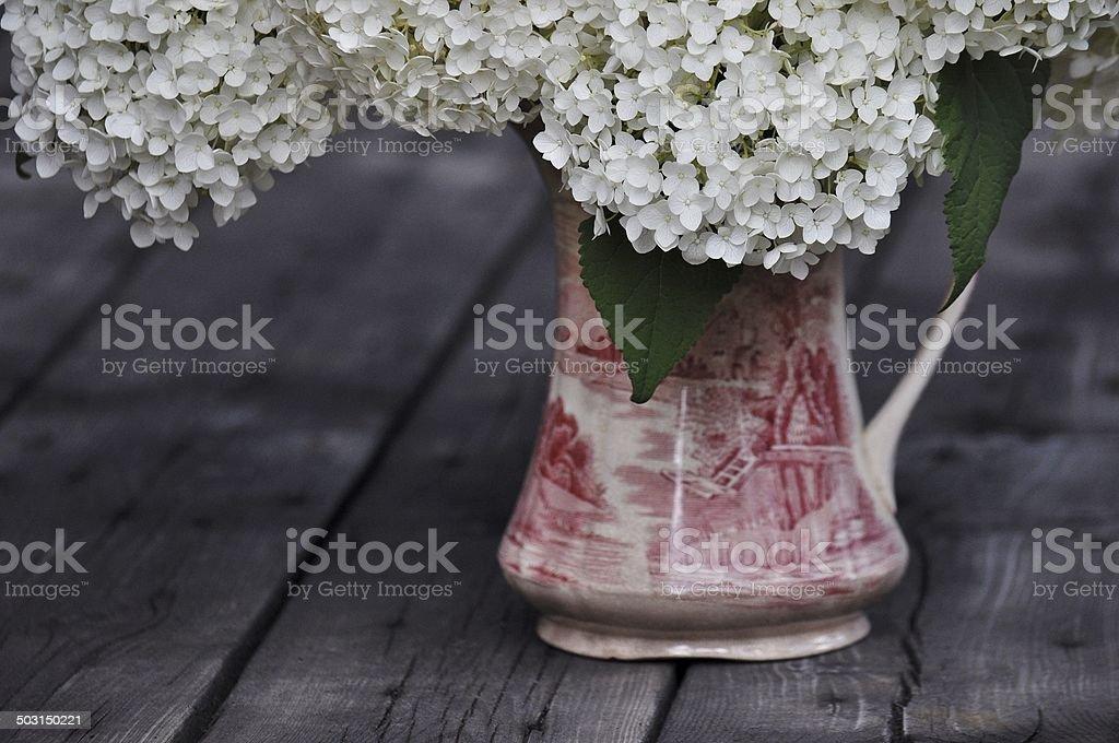 Vintage Hydrangea - Red And Cream Vintage Vase stock photo