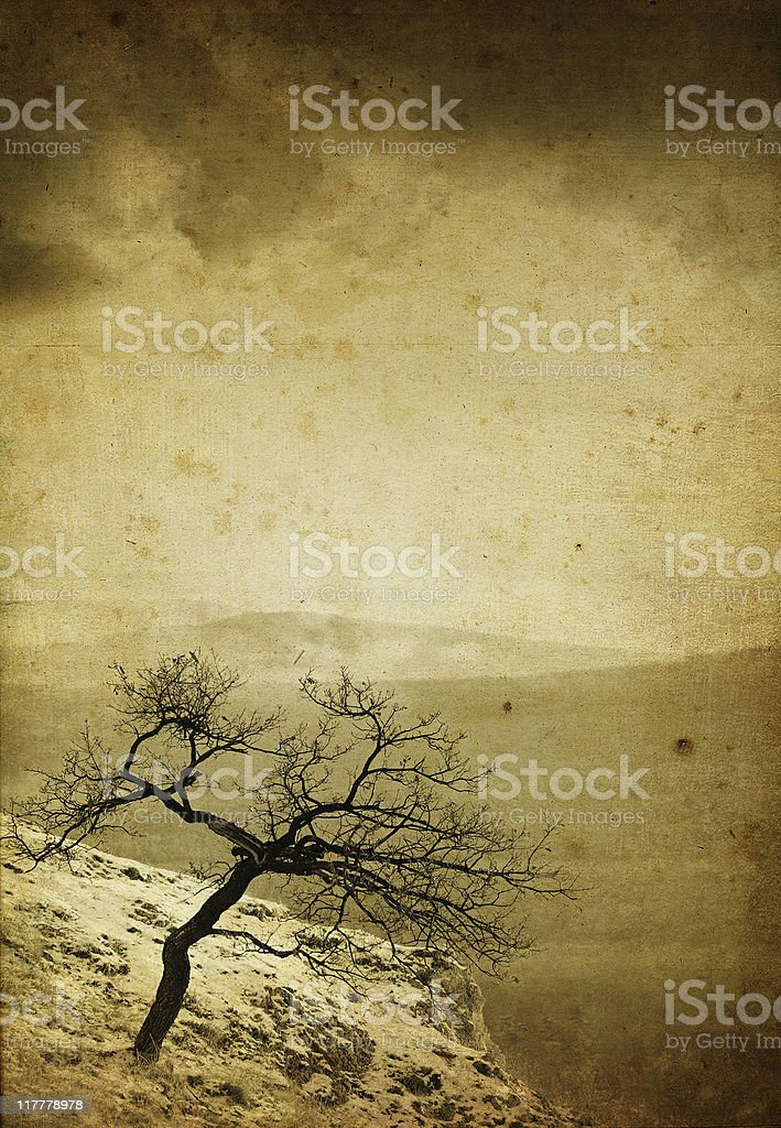 vintage lonely tree royalty-free stock photo
