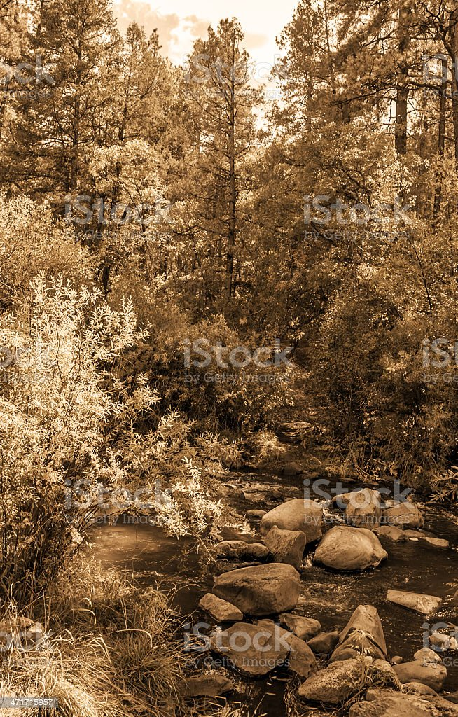 Vintage look pictures of Jemez River in New Mexico stock photo