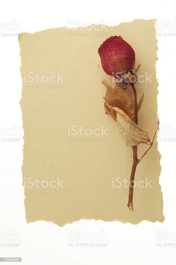 vintage love message. royalty-free stock photo