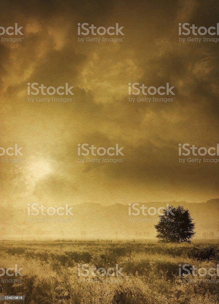 vintage misty morning royalty-free stock photo