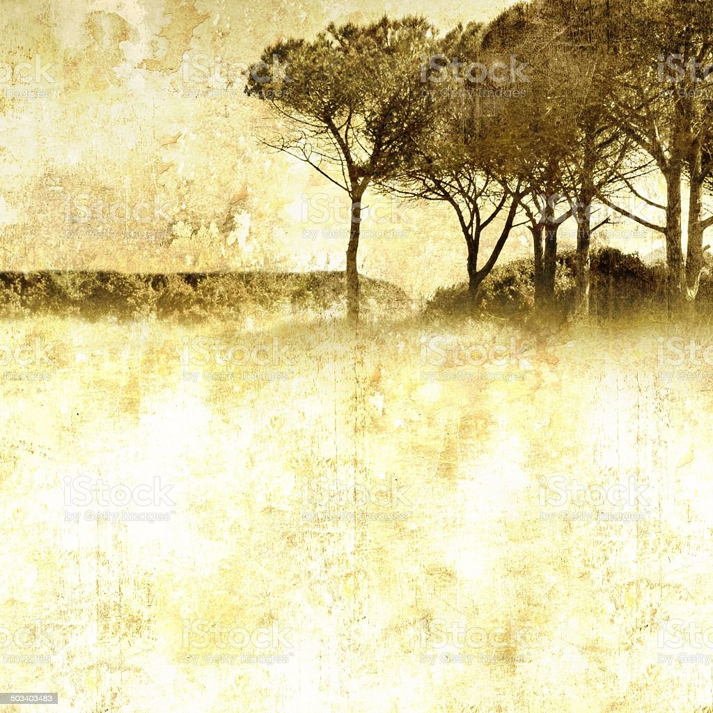 Vintage nature background with group of trees stock photo
