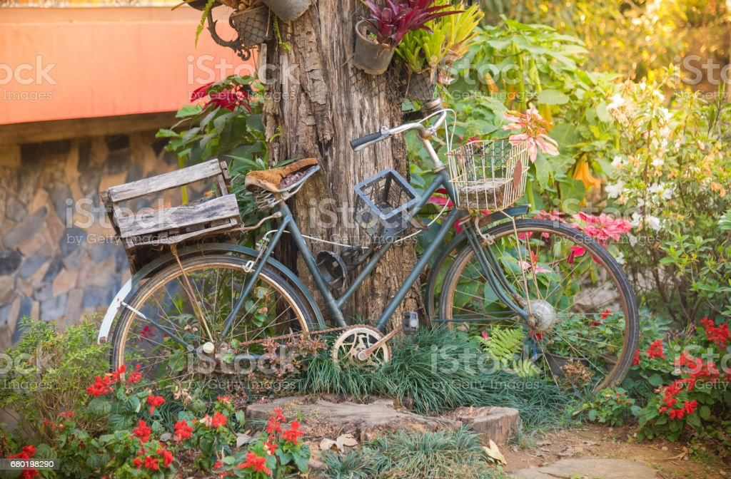 Vintage old bicycle with garden background stock photo