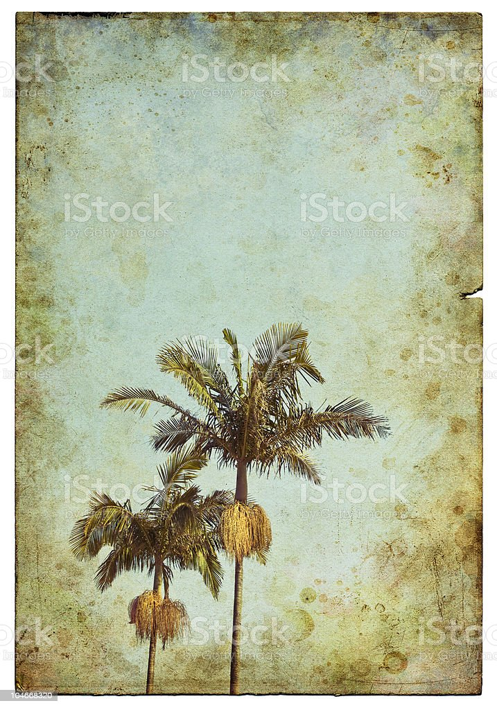 Vintage Palm Postcard royalty-free stock photo