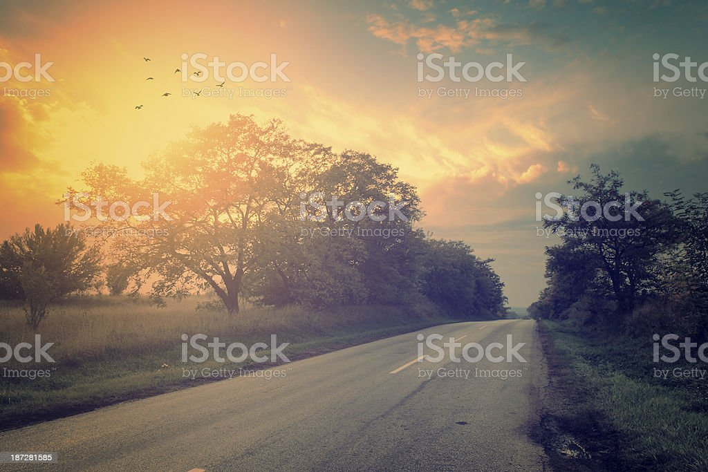 A vintage photo of a paved road in a gorgeous bright sunset royalty-free stock photo