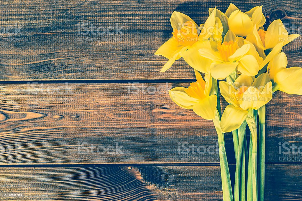 Vintage photo of daffodils on wooden background with copy space stock photo