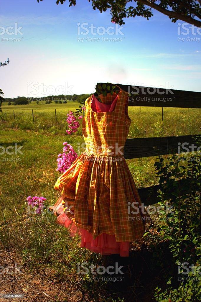 Vintage Plaid Dress Next to Gate, Summer Field, Crape Myrtles stock photo
