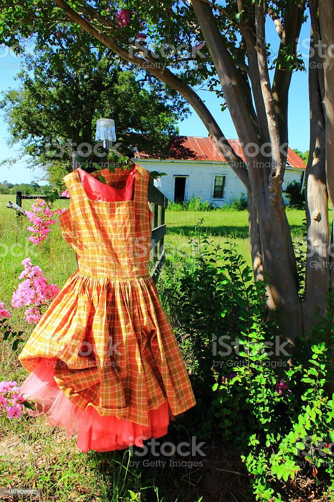 Vintage Plaid Dress Posed with Crape Myrtle and Abandoned Building stock photo