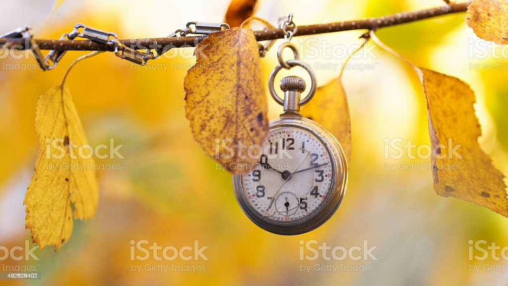 Vintage Pocket Watch and Golden Birch Leaves in Autumn stock photo
