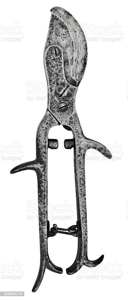vintage pruning shears stock photo