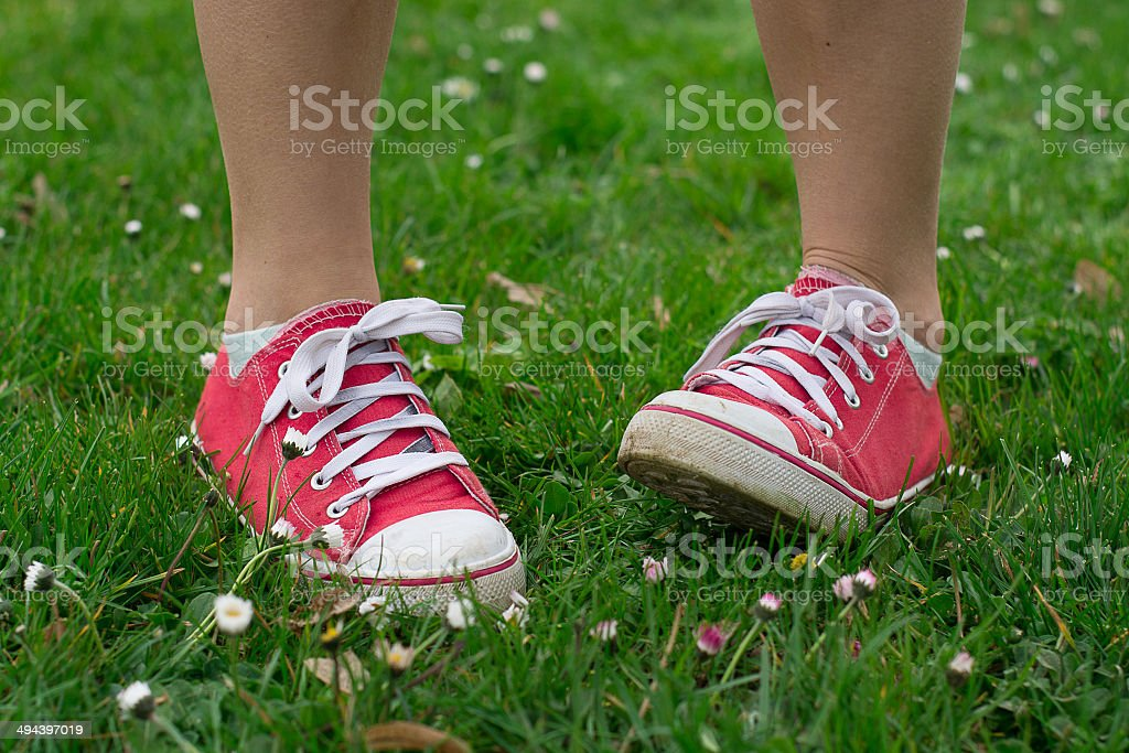 Vintage red shoes in green grass stock photo