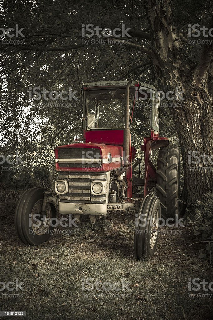 Vintage Red Tractor stock photo