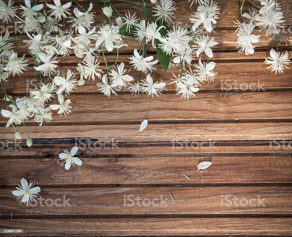 Vintage retro background with small white flowers on wood. stock photo