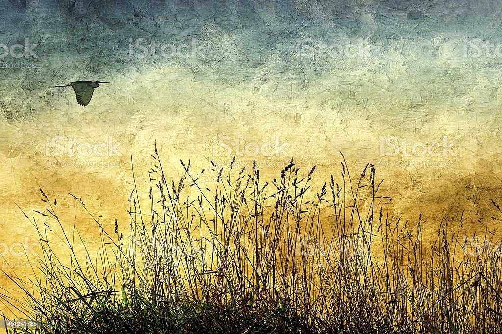 Vintage rural view with wild herbs and flying heron royalty-free stock photo