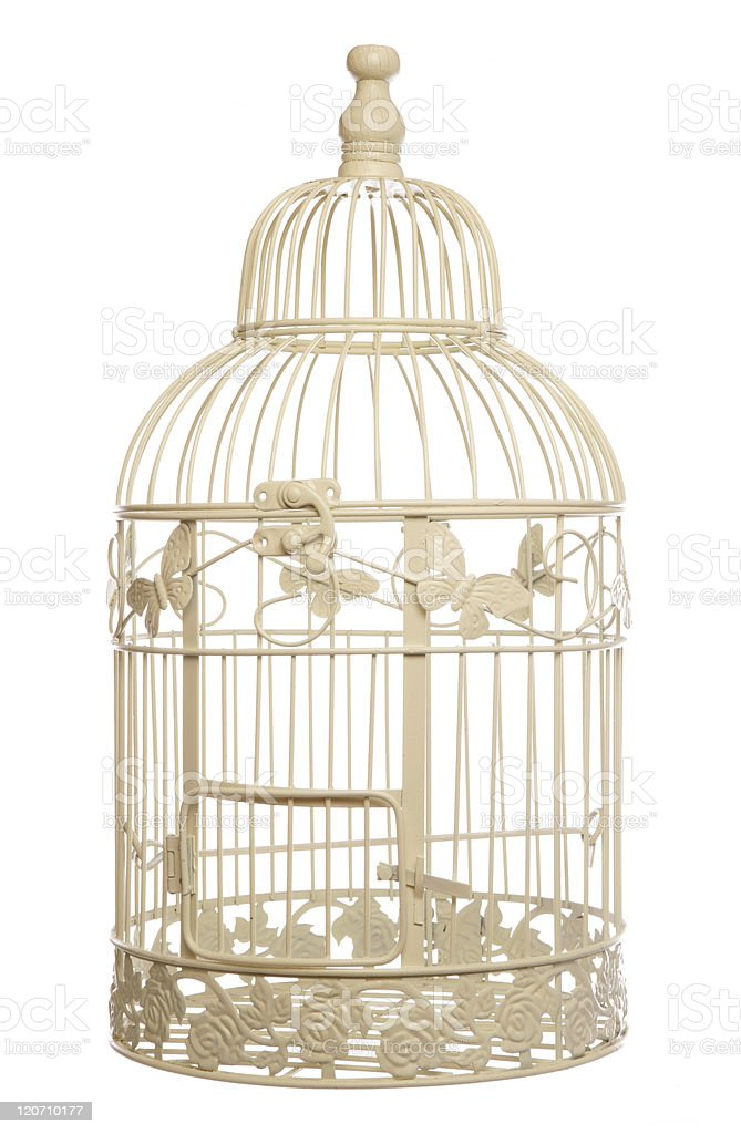 vintage shabby chic bird cage royalty-free stock photo