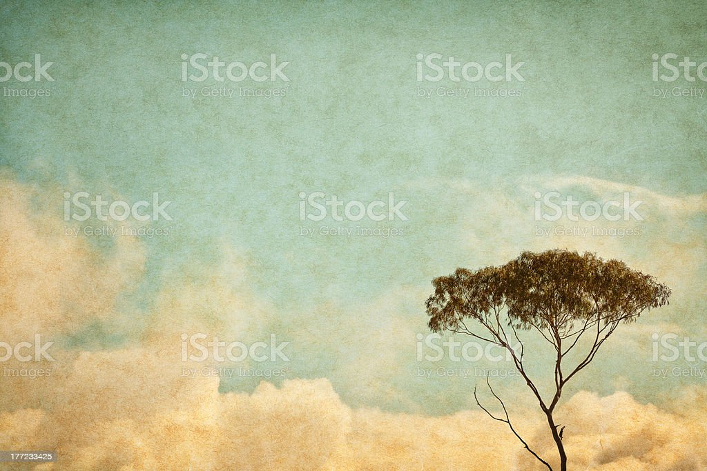 Vintage Sky and Tree stock photo