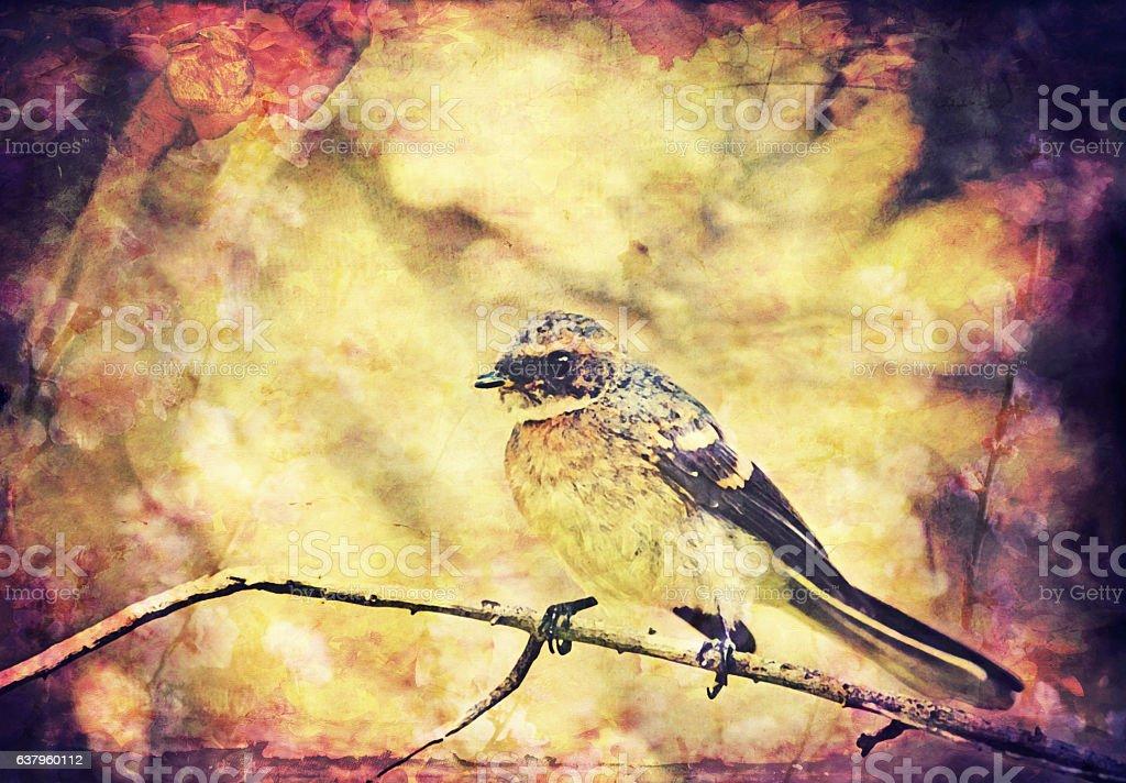 Vintage Songbird background stock photo