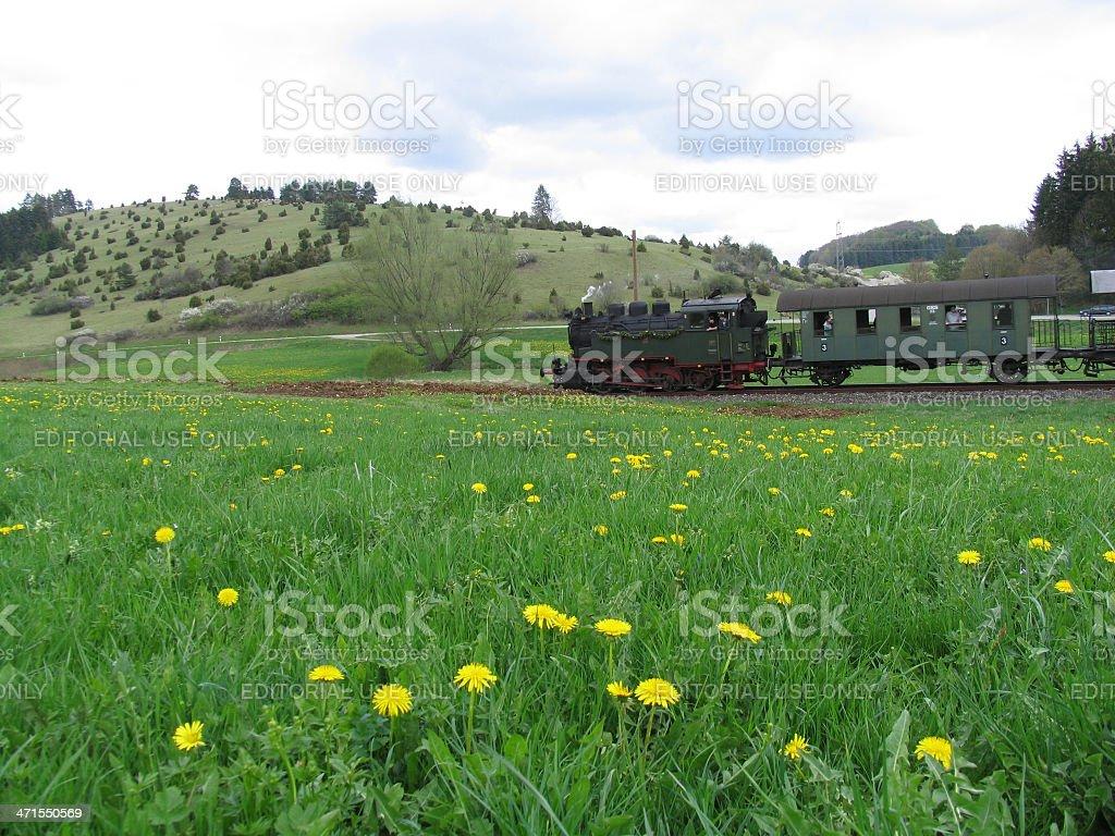 Vintage steam train on tour royalty-free stock photo