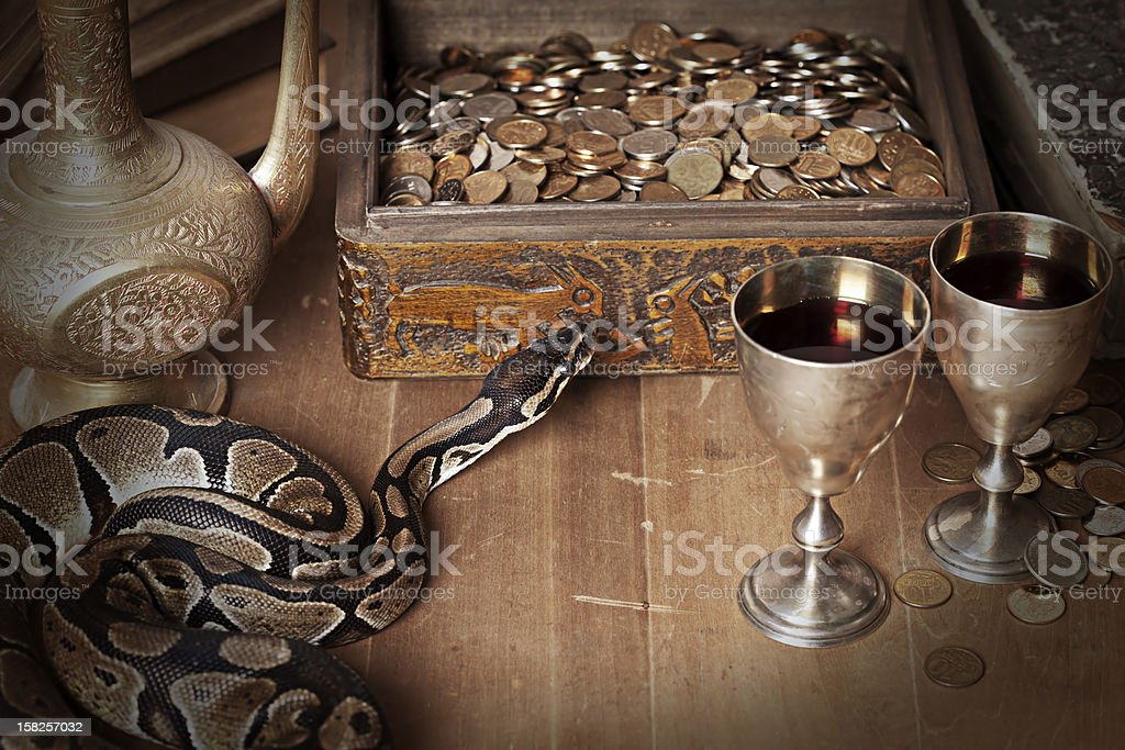 Vintage still life with Royal Python stock photo