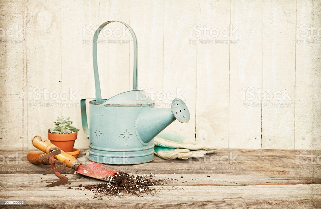 Vintage Style Gardening with Hand Shovel, Rake and Watering Can stock photo