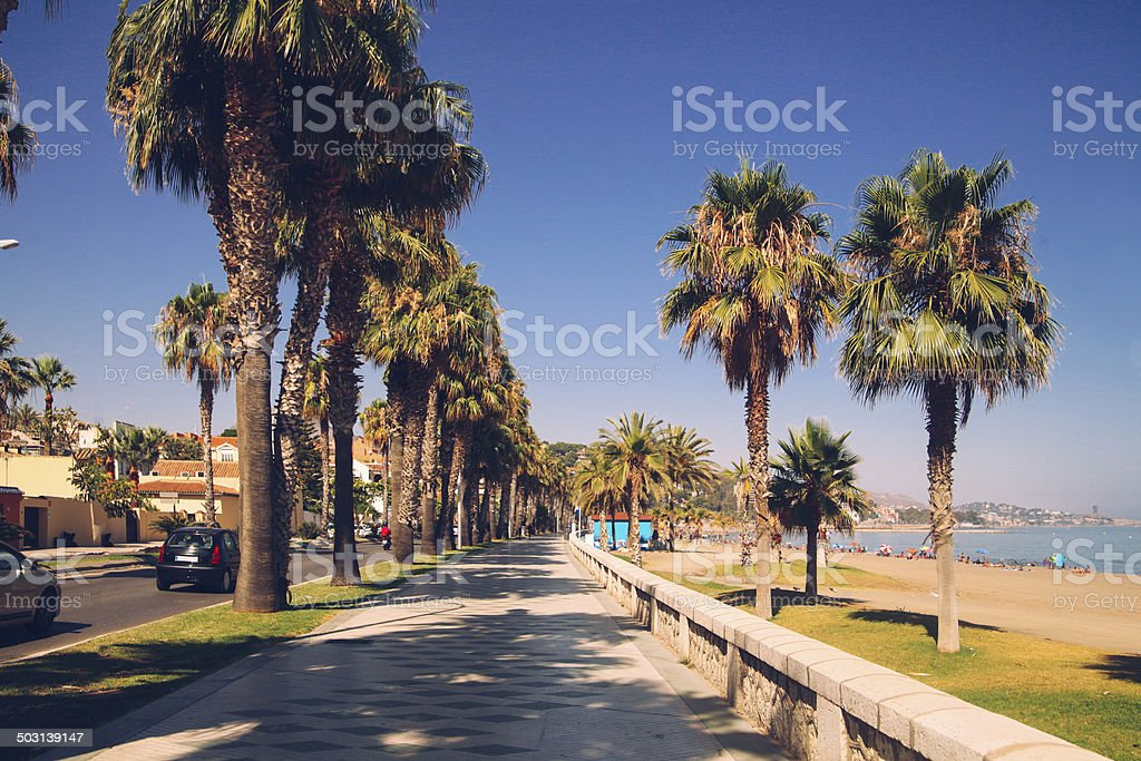 vintage summertime royalty-free stock photo
