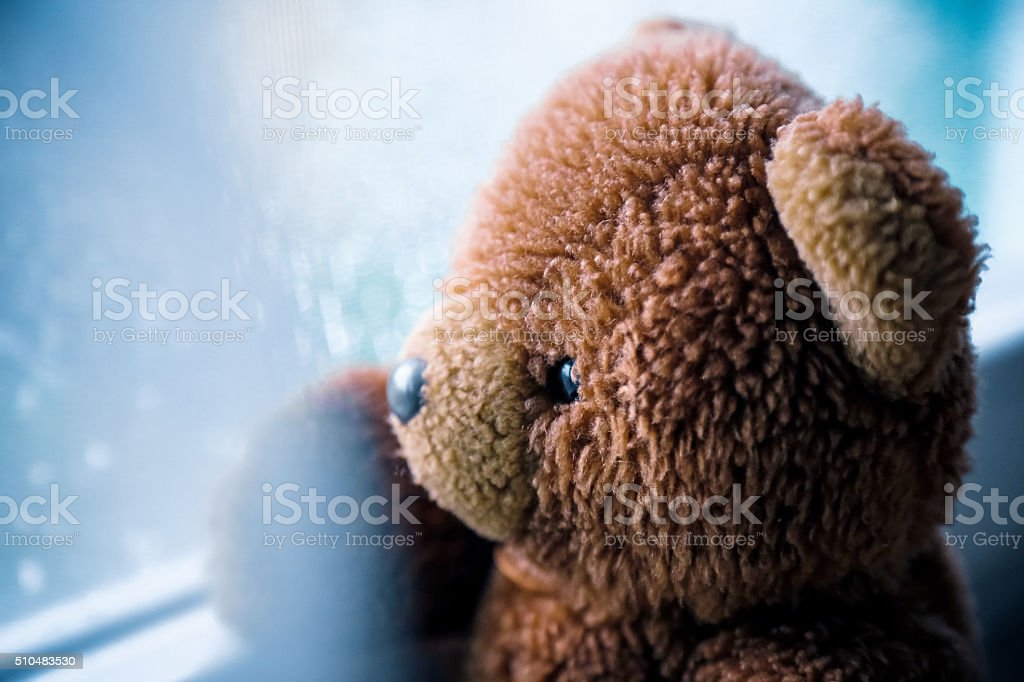 Vintage teddy bear looking through  wet window stock photo