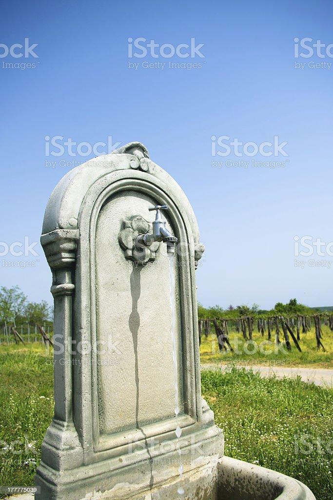 Vintage water tap at vineyard royalty-free stock photo