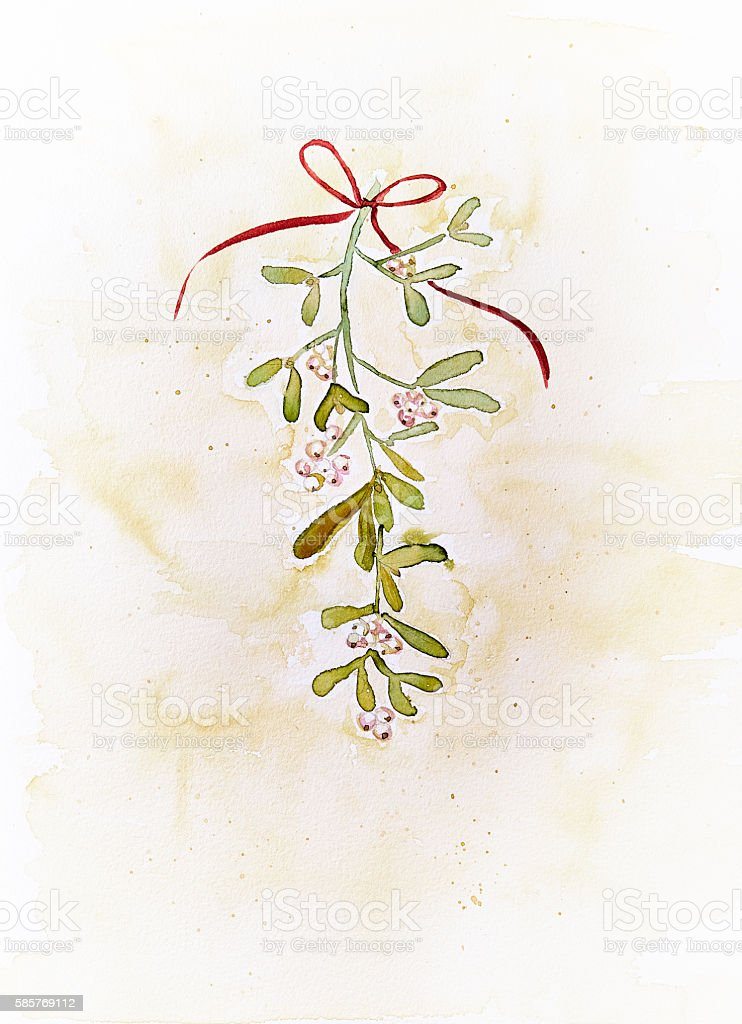 Vintage Watercolor Mistletoe (hand drawn) stock photo