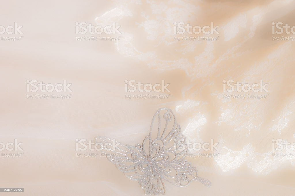 Vintage Wedding dress, butterfly and white lace close up (P) stock photo
