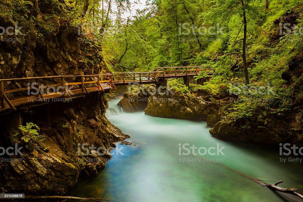 Vintgar Gorge in Ljubljana, Slovenia stock photo