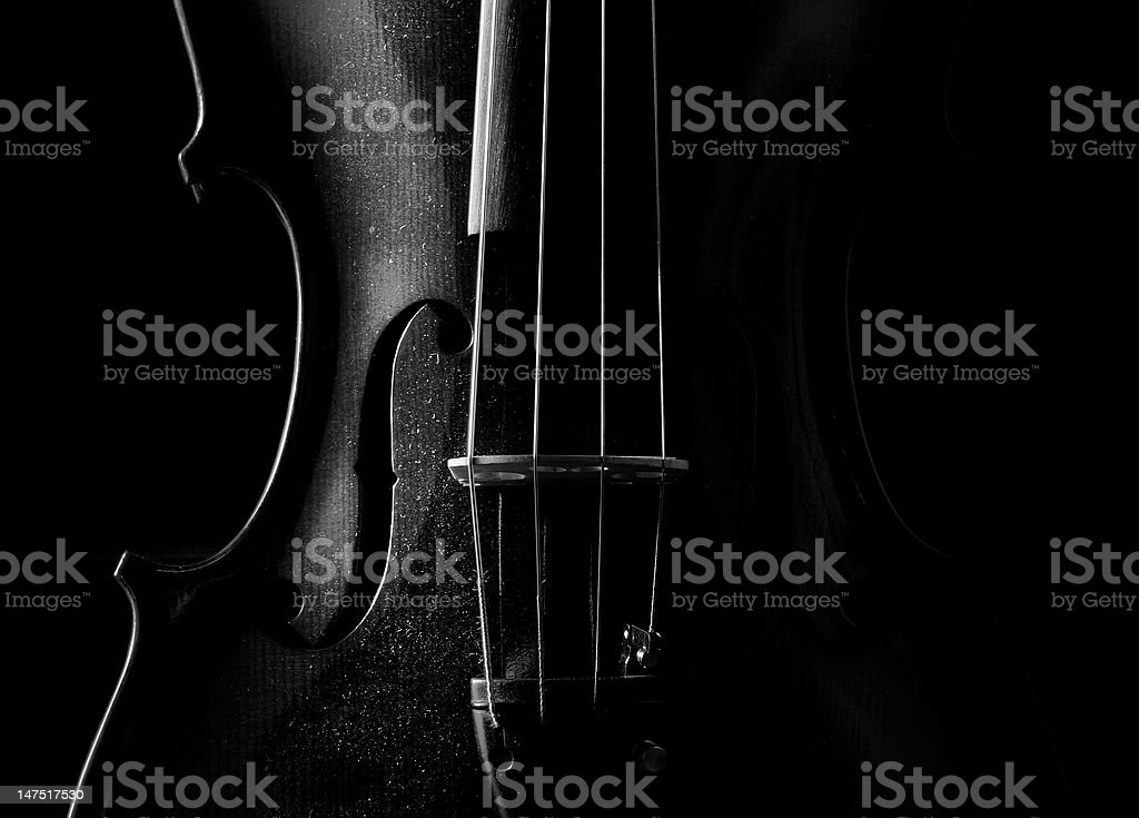Viola in the dark stock photo