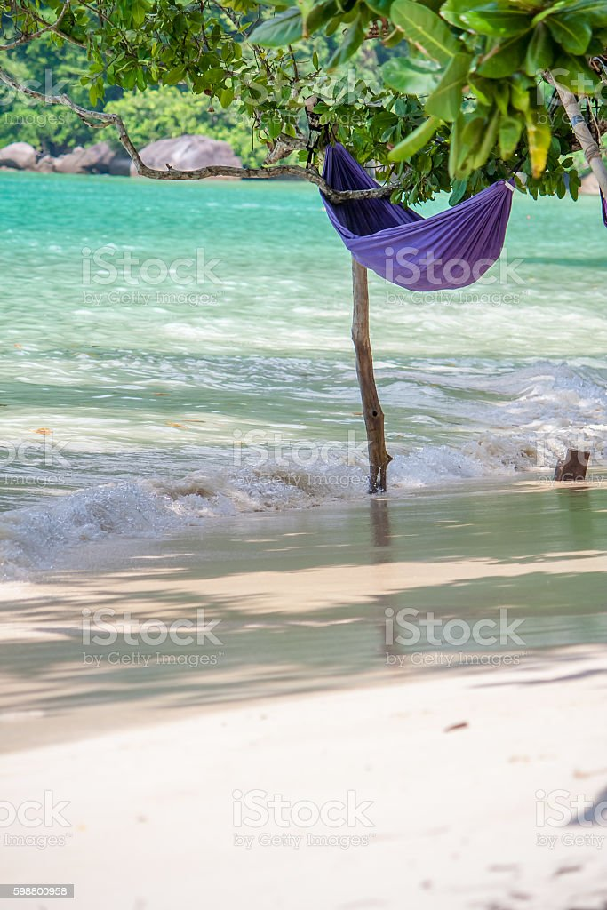violet hammock hang on tree Over wave at beach stock photo