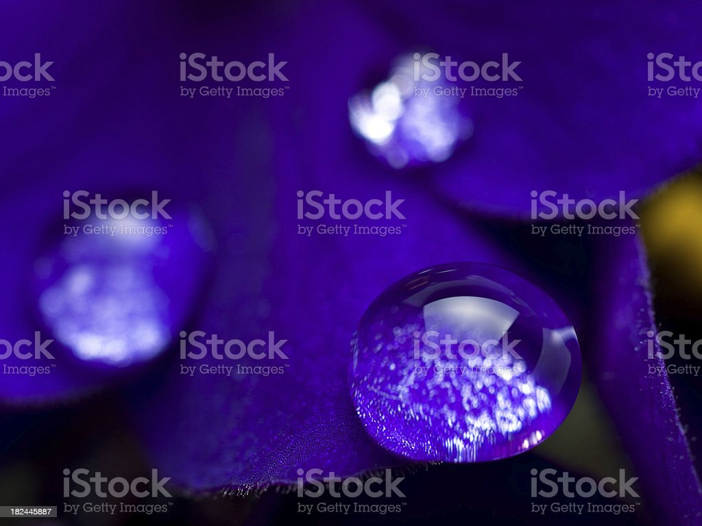 Violet water drop royalty-free stock photo