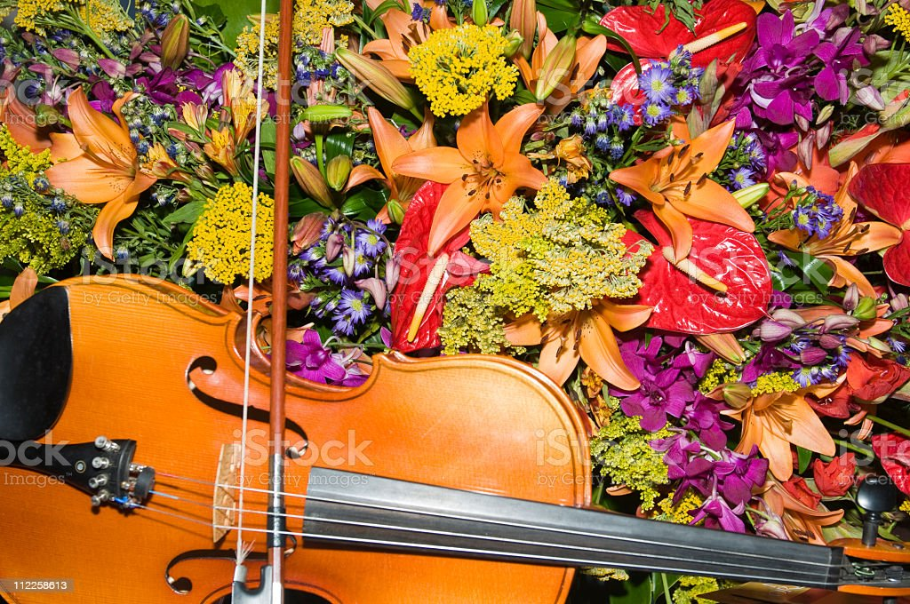 Violin and bright flower bouquet royalty-free stock photo